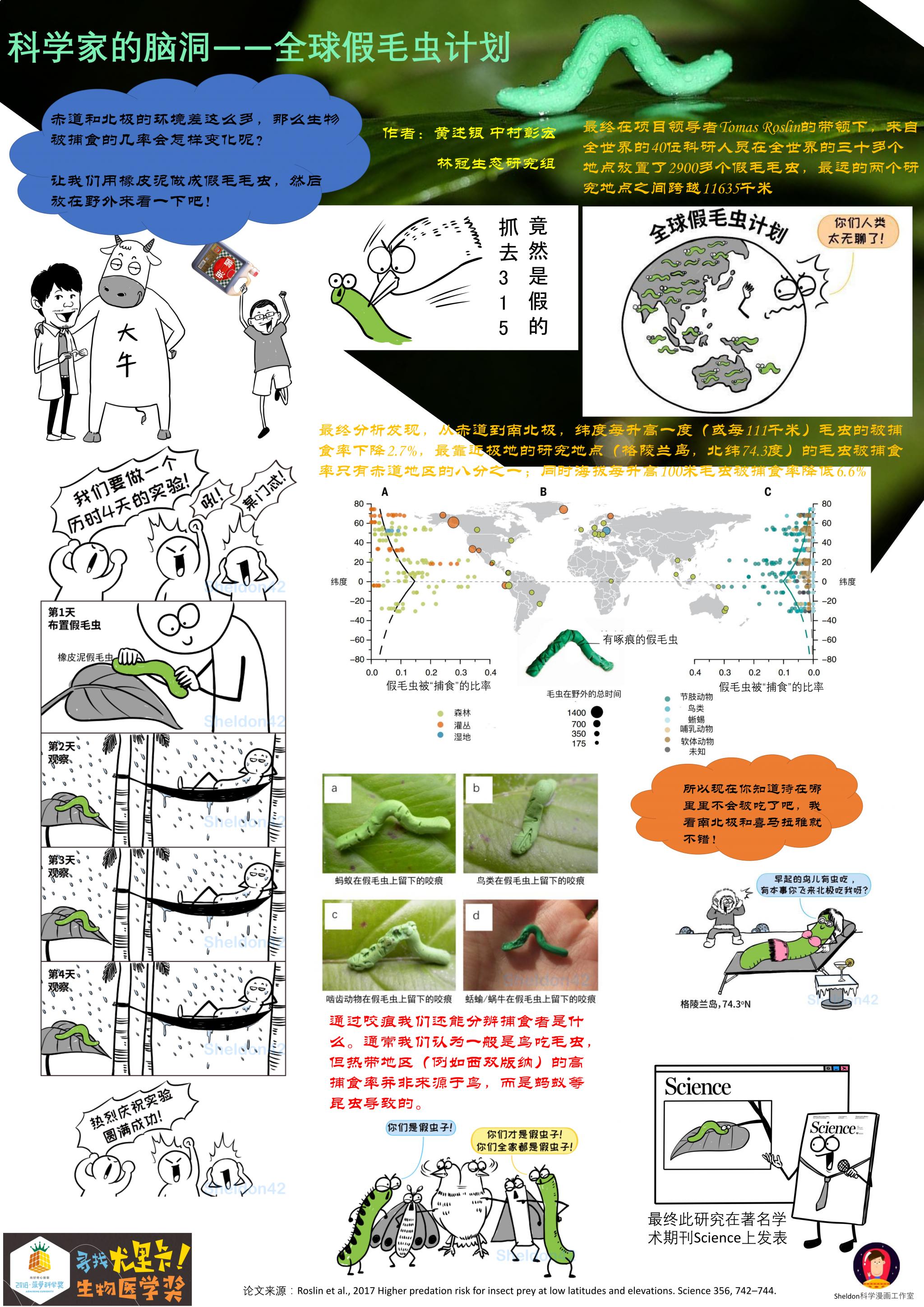 全球假毛虫计划