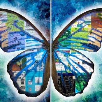中国科学院西双版纳热带植物园2015年十大新闻