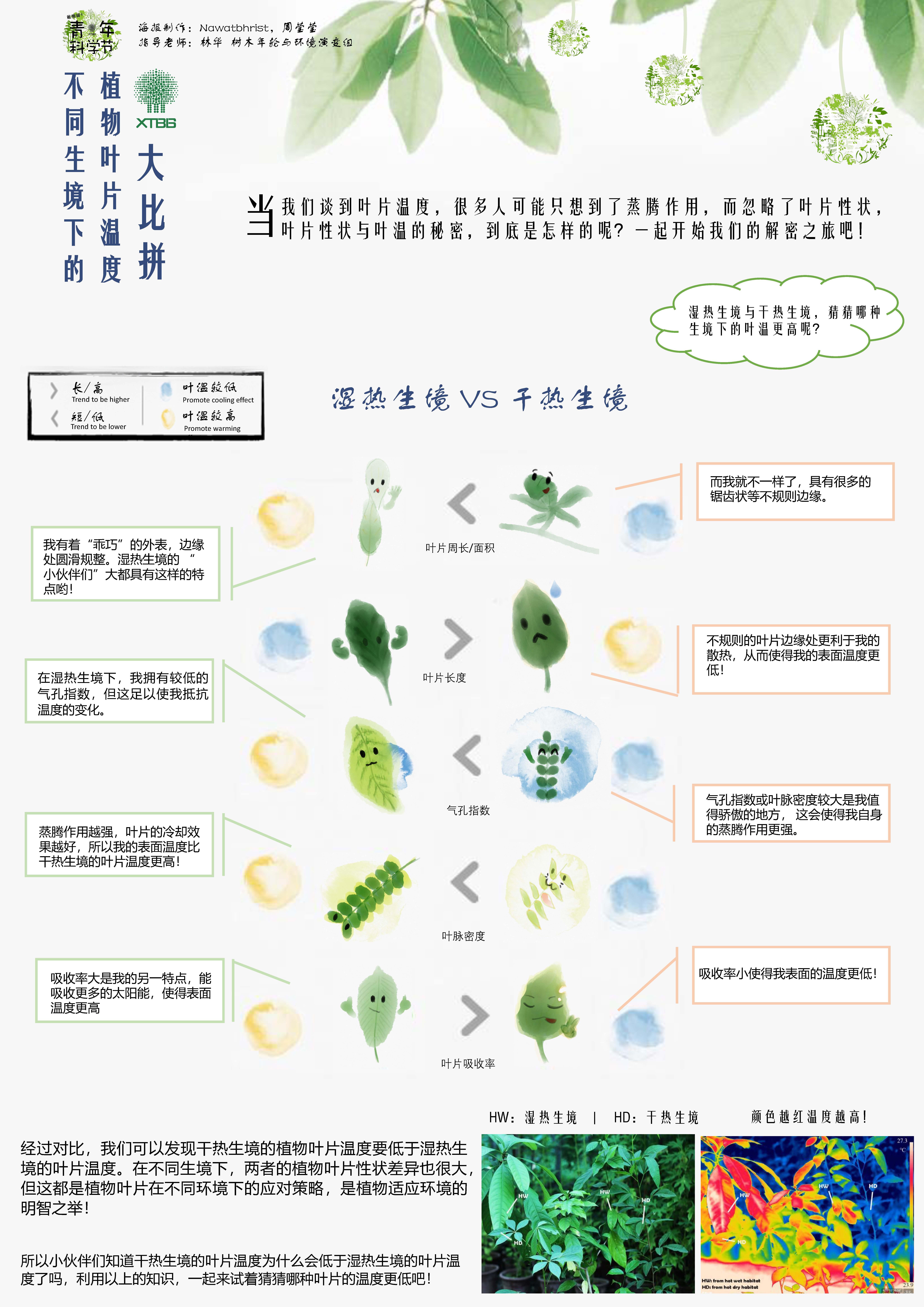 不同生境下的植物叶片温度大比拼(作者:mat&周莹莹)
