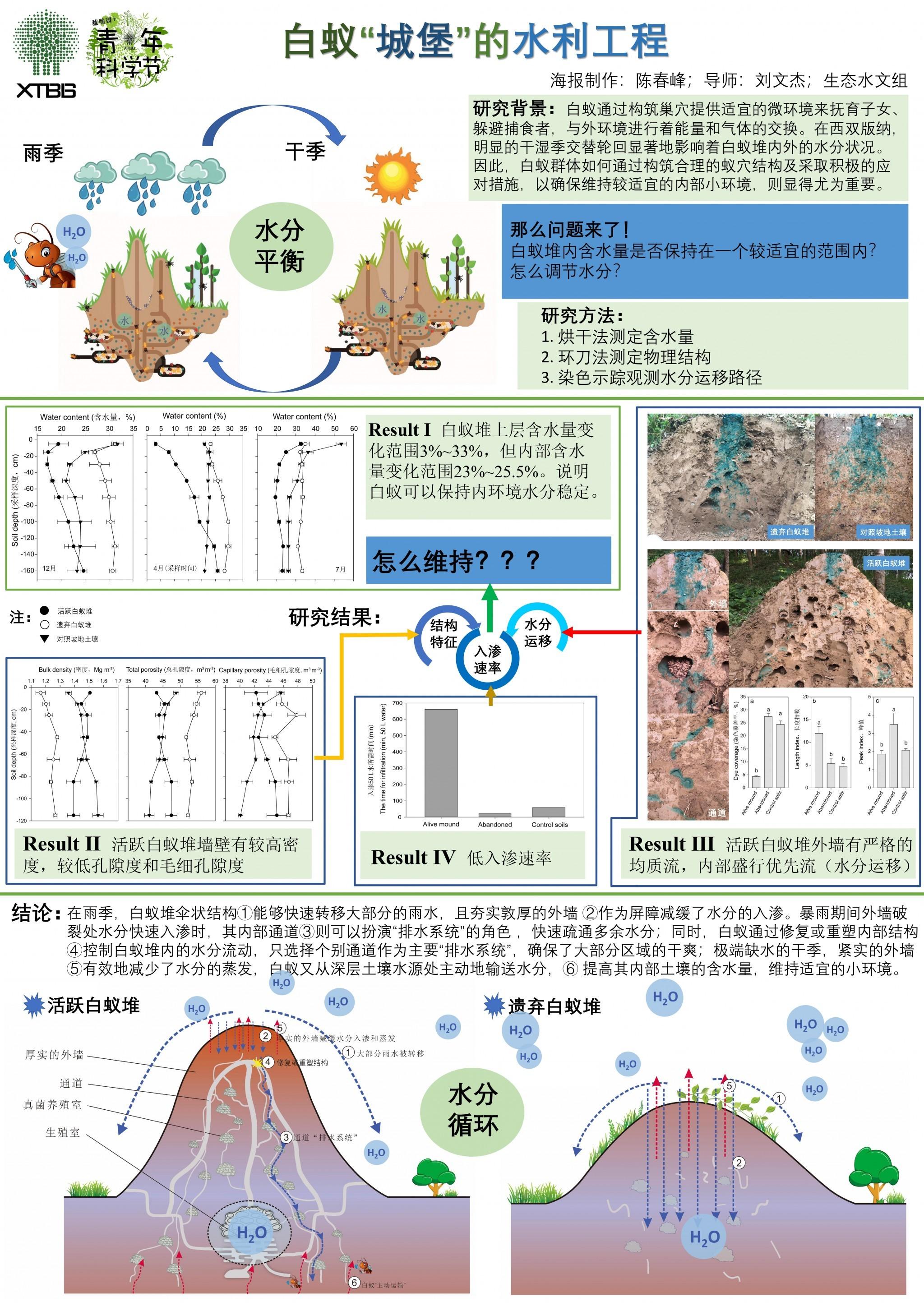 """白蚁""""城堡""""的水利工程(作者:陈春峰)"""