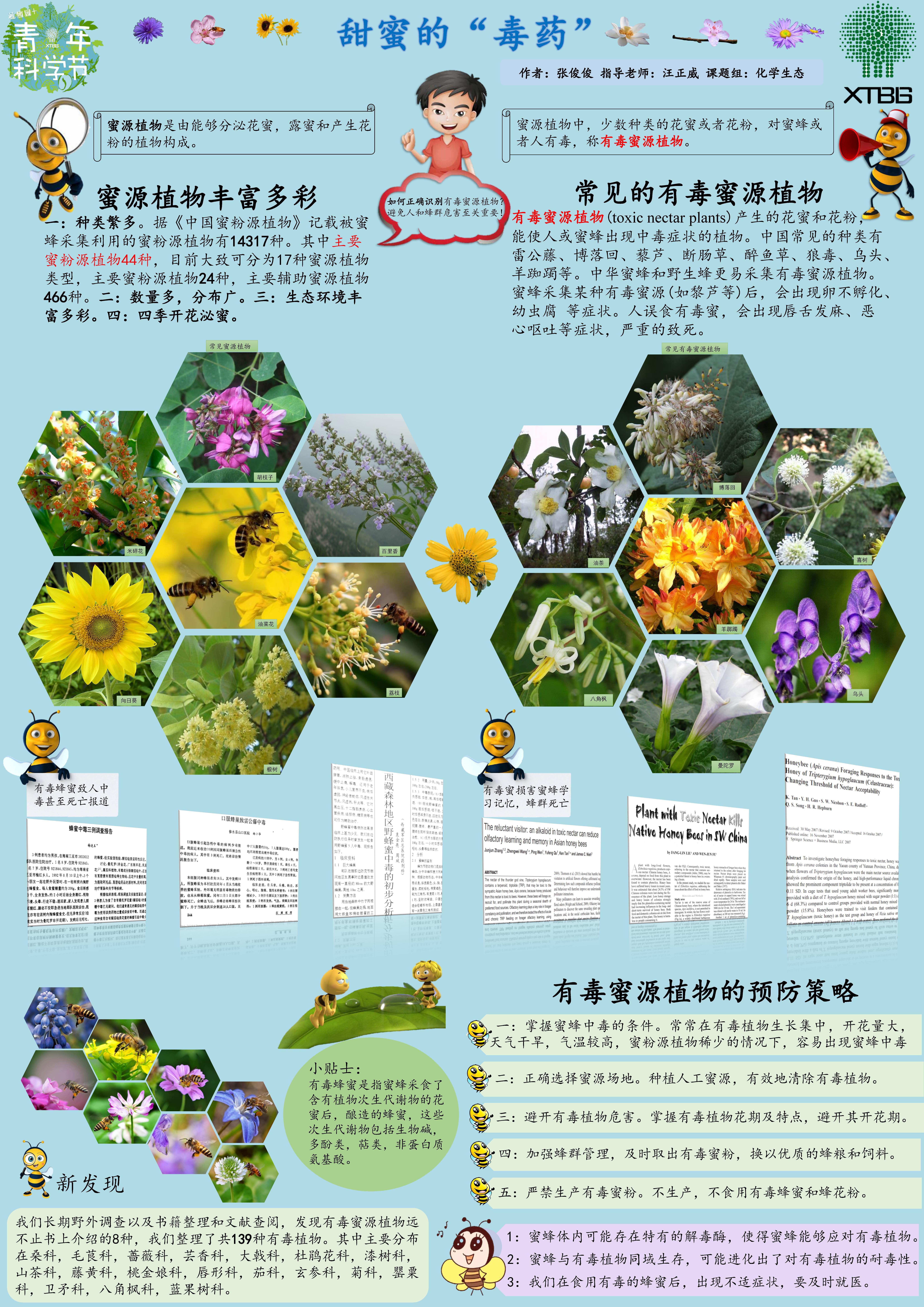 蜜蜂的花花世界(作者:张俊俊)
