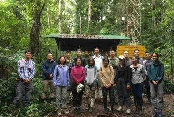 版纳植物园推进泰国两个大型森林动态样地的合作研究