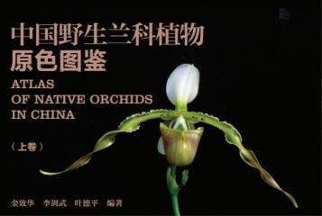 《中国野生兰科植物原色图鉴》正式出版