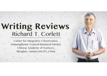 报导_Writing Reviews视频上线_final_新闻封面 - 副本