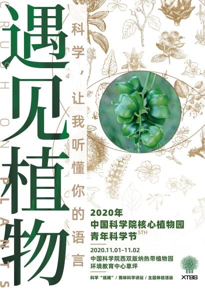 「遇见植物」主题系列海报(西双版纳主场)